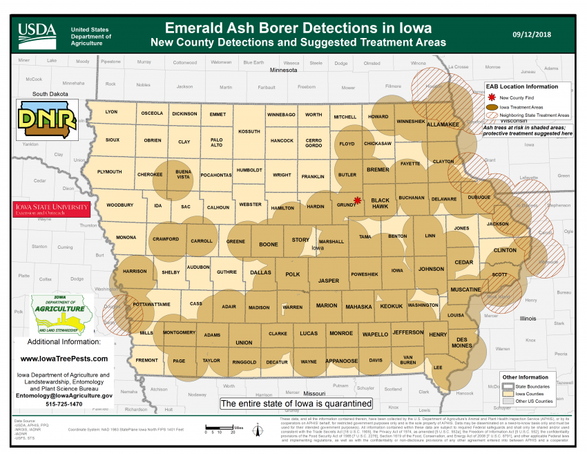 Map of the state of Iowa showing where the emerald ash borer has been confirmed.