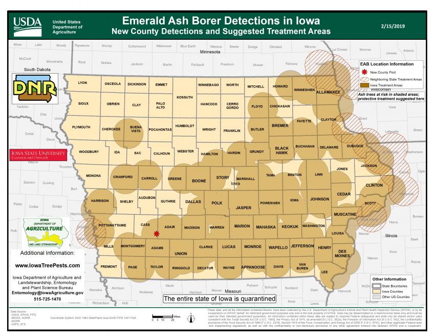 Emerald Ash Borer Map