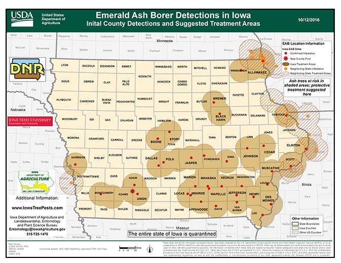 Emerald Ash Borer Detections in Iowa, Initial County Detections and Suggested Treatment Areas with Adair and Adams counties added