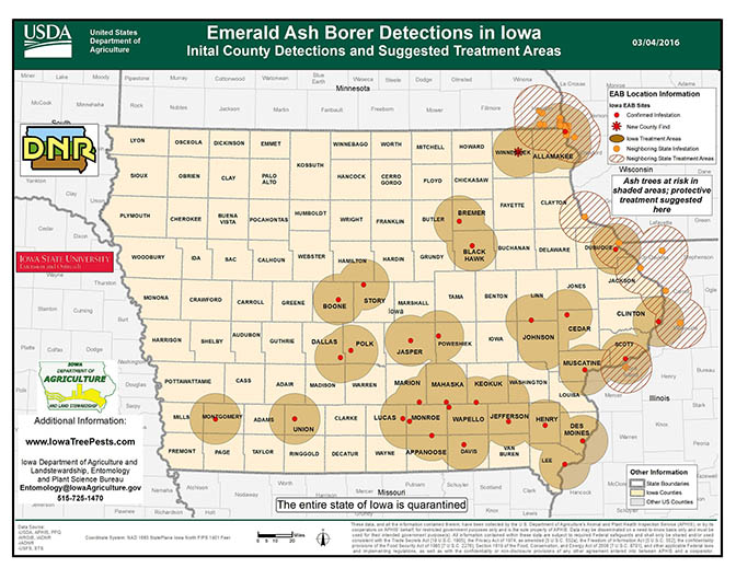Map of emerald ash borer impact