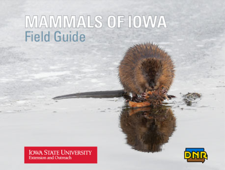 Cover of Extension pamphlet, Mammals of Iowa