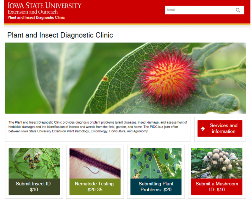 Check our new websiteclinic.ipm.iastate.eduwe added more photosand videos!
