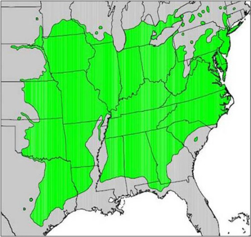 """Atlas of United States Trees"