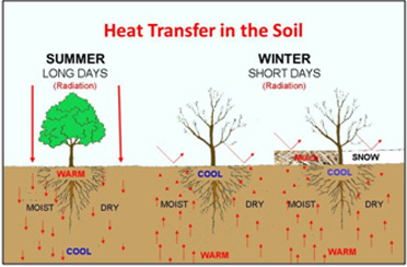 Heat transfer in the soil.