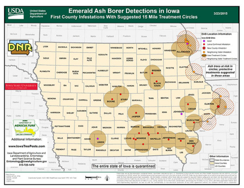 Emerald ash borer known distribution in Iowa, March 25, 2015.