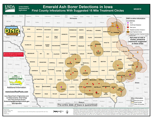 Known distribution of the emerald ash borer in Iowa as of June 12, 2015.