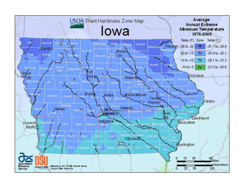 The new USDA Hardiness Zone Map puts most of Iowa in Zone 5.