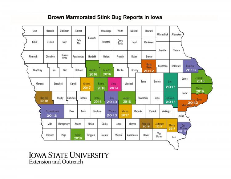 Map of Iowa showing the reported distribution of BMSB