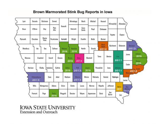 Reported distribution of BMSB in Iowa 2011 - 2017