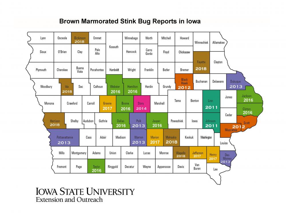 Map showing the reported distribution of BMSB