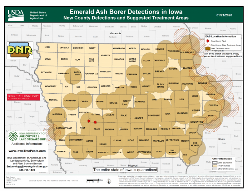 Map of Iowa showing current distribution of confirmed EAB infestations