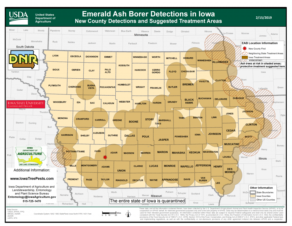 Map of Iowa showing current distribution of confirmed EAB infestations as of February 15, 2019