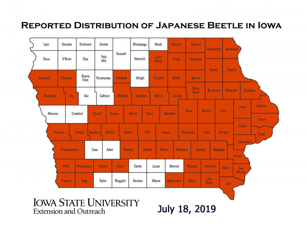 Map of Iowa showing current distribution of reported Japanese beetles