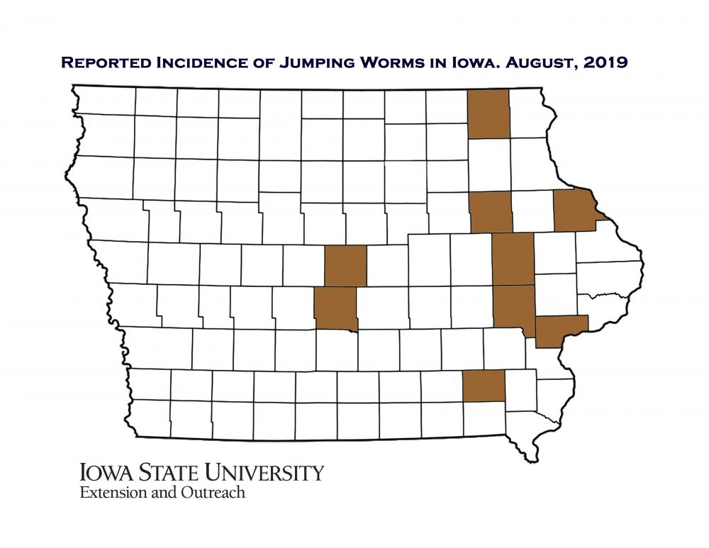 Jumping Worms in Iowa | Horticulture and Home Pest News