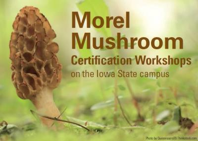 morel certification workshops on the Iowa State University campus