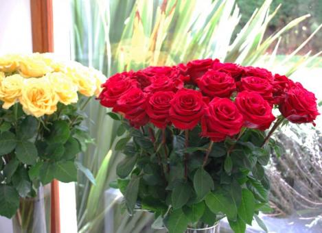 Red and yellow roses in vases.