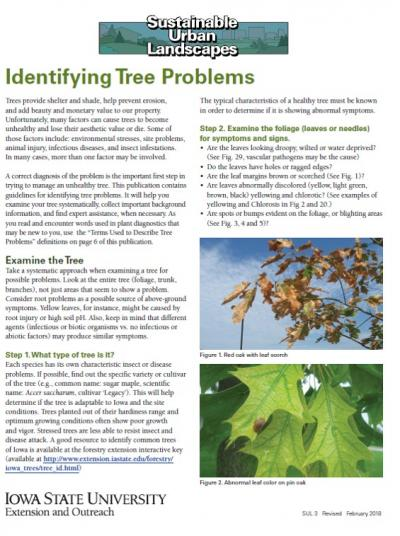 Check out our new edition ofthepublicationIdentifying Tree Problems