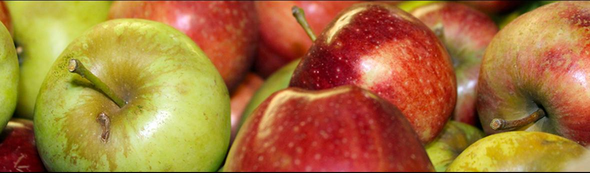 close up of green and red apples