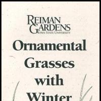 Ornamental Grasses with Winter Interest -- Reiman Gardens